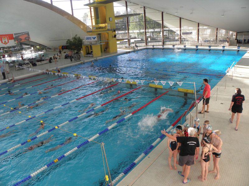 Eintracht hildesheim schwimmen jugend stadionbad hannover for Pokale hannover